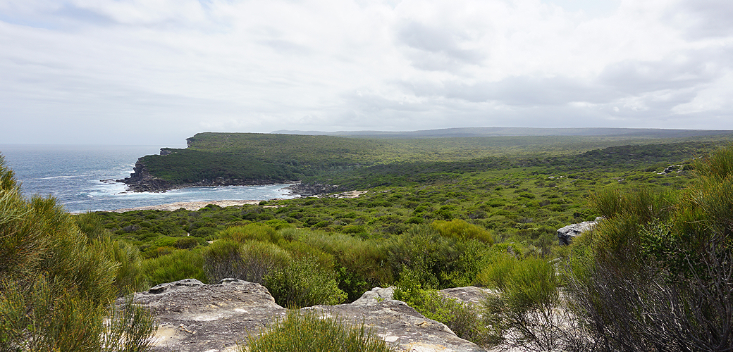 Royal National Park coastal view